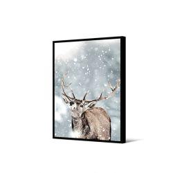 Toile encadré Cerf dans la neige 50 x 70 cm, collection My gallery, Pôdevache