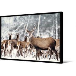 Toile encadré Groupe de cerfs, format paysage 100 x 140 cm, collection My gallery, Pôdevache