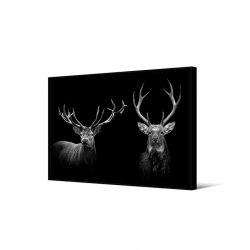 Toile encadré Duo cerf noir et blanc, 65 x 92,5 cm, collection My gallery, Pôdevache