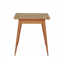 Table 55 Plateau Chêne, Terracotta, Tolix, 70 X 70 X H74 cm