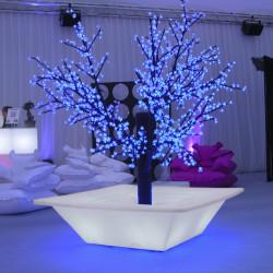 Pot Bench lumineux, Slide Design blanc Petit modèle