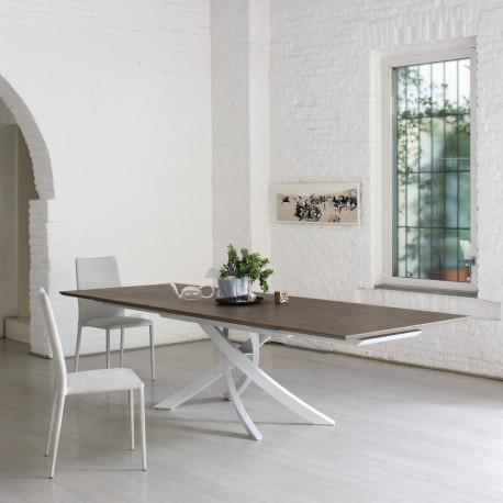 Table Sculptura en bois orme 200x106 cm